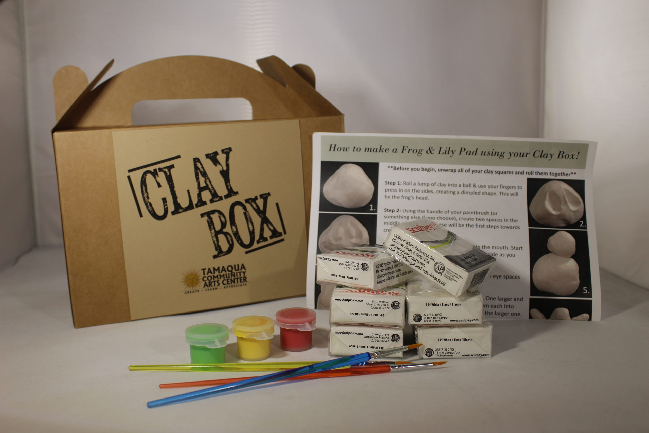 Clay Box At Home Sculpt Kit – Frog